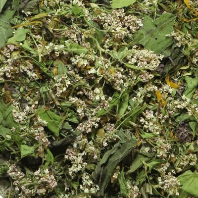 Kaleidoskopas žolelių arbata