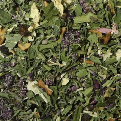 Flaming Shrub herbal tea