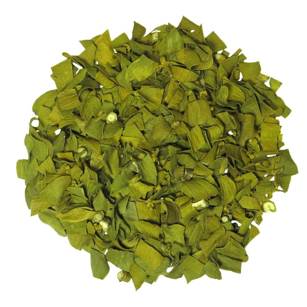 Mistletoe herbal tea