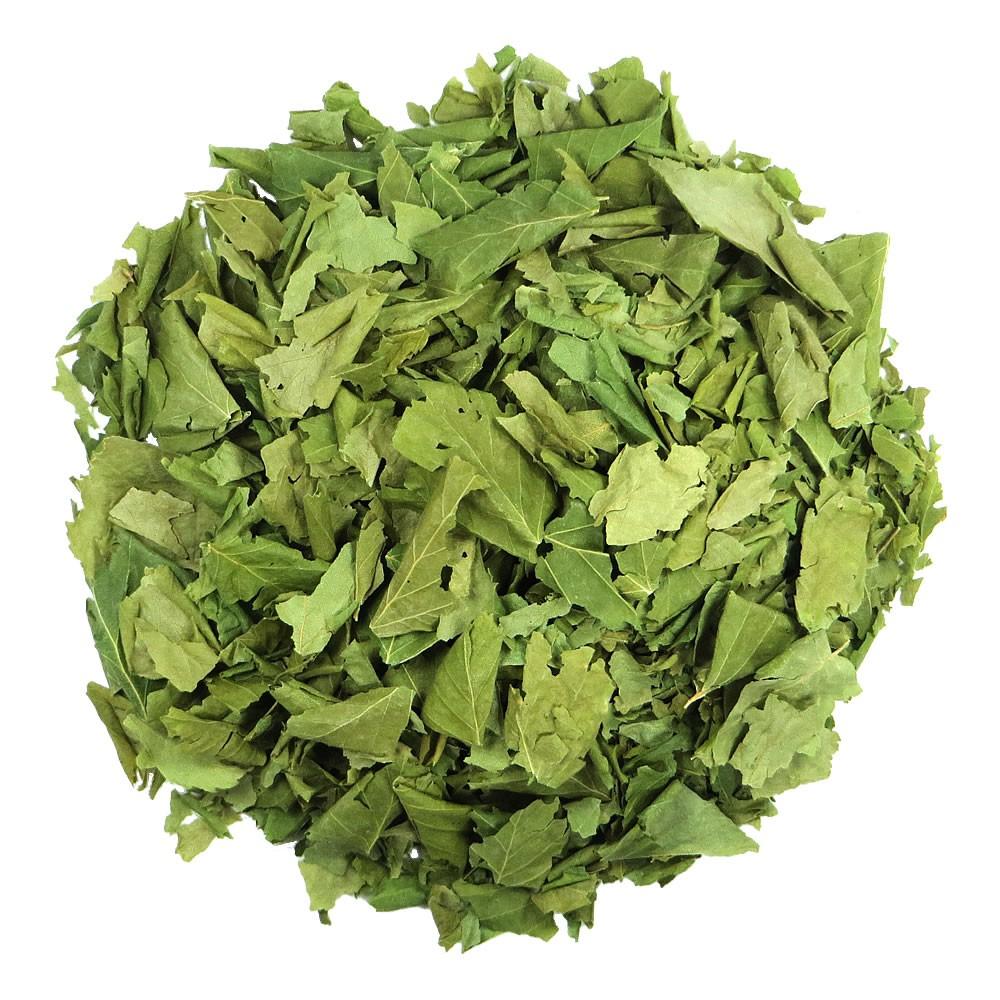 Beržo lapų arbata