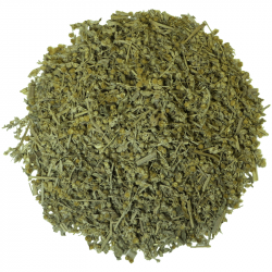 ABSINTH WORMWOOD