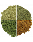 Organic nutritious herbal powders